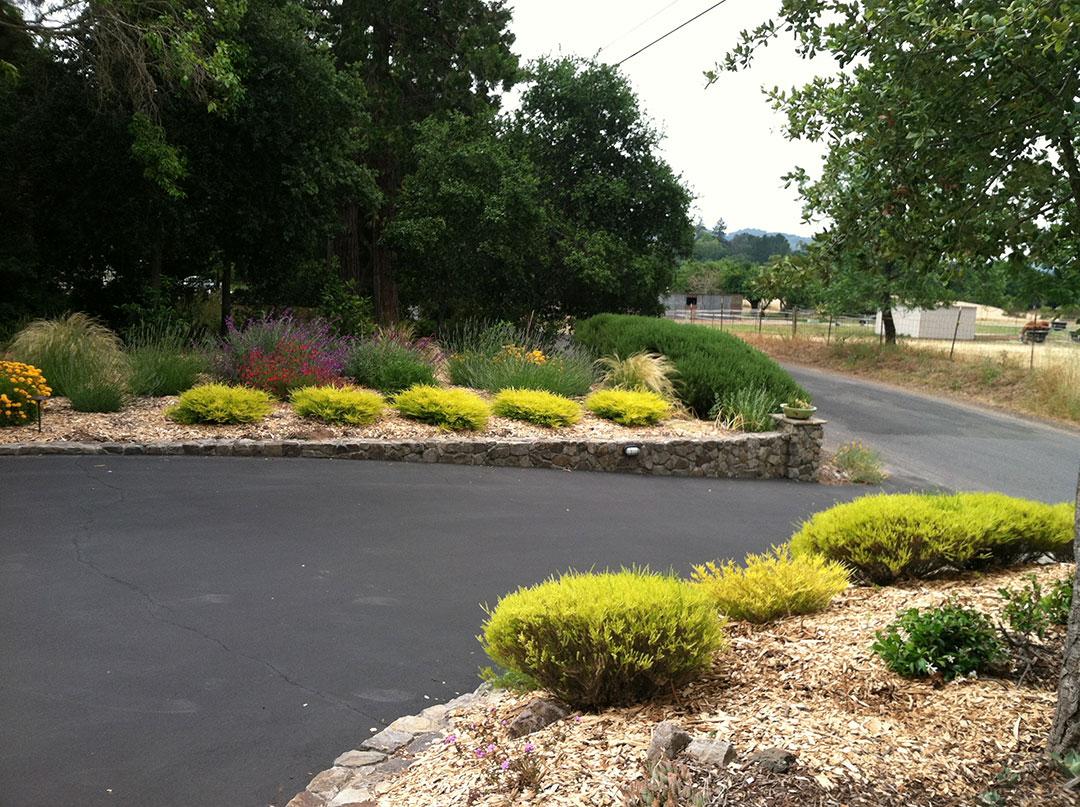CP Lawns